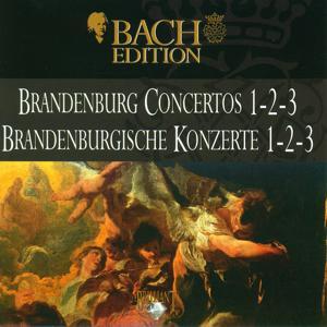 Bach: Brandenburg Concertos 1 - 2 - 3