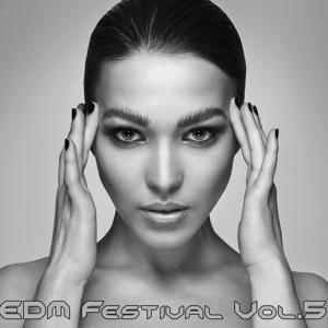 EDM Festival, Vol. 5
