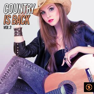 Country Is Back, Vol. 3