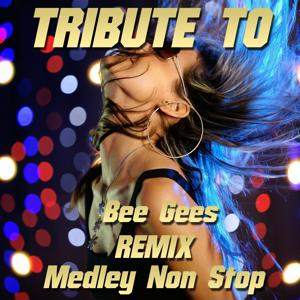 Tribute to Bee Gees Remix Medley Non Stop: You Should Be Dancing / More Than a Woman / Night Fever / How Deep Is Your Love / Tragedy / Stayin' Alive / Too Much Heaven / Payin' the Price of Love / To Love Somebody / Run to Me / Words / Massachussets (Remix by Julian B)