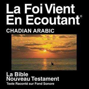 Arabic (Chadian) Bible - Injil