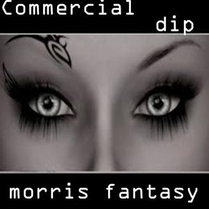 Commercial Dip
