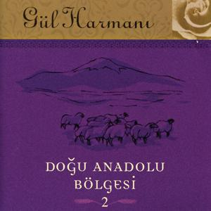 Gul Harmani Dogu Anadolu Bolgesi 2