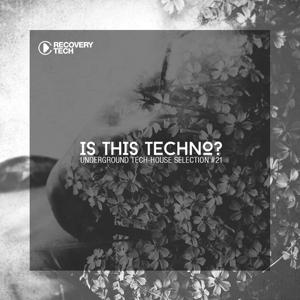 Is This Techno?, Vol. 21
