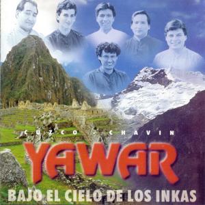 Bajo el Cielo de los Incas