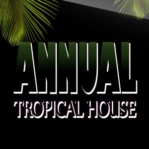 Annual Tropical House (100 Super Hits Dance Electro House Party Night)