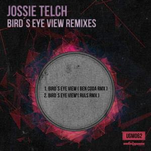 Bird's Eye View Remixes