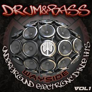 Drum & Bass Wayside Underground Electronic Dance Hits Volume 1