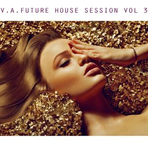 V.A. Future House Session, Vol. 3