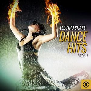 Electro Shake: Dance Hits, Vol. 1