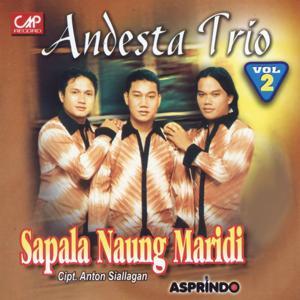 Andesta Trio, Vol. 2 (Sapala Naung Paridi)