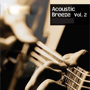 Acoustic Breeze, Vol. 2