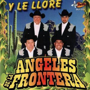 Y Le Llore