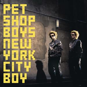 New York City Boy