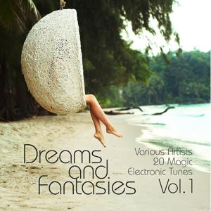 Dreams and Fantasies (20 Magic Electronic Tunes), Vol. 1