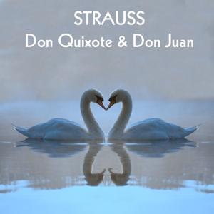 Strauss Don Quixote & Don Juan