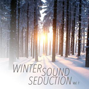 Winter Sound Seduction, Vol. 1
