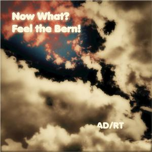 Now What? Feel the Bern!