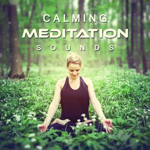 Calming Meditation Sounds: Relax, Zen Garden, New Age, Relaxing Music, Welness Soundtrack, Natural Remedy, Sleep Well