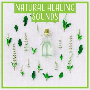 Natural Healing Sounds: Zen Meditation and Chakra Meditating, Soothing Your Mind, Serenity and Peace