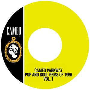 Cameo Parkway Pop And Soul Gems Of 1966 Vol. 1