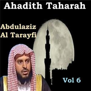 Ahadith Taharah Vol 6