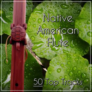 Native American Flute – 50 Top Tracks: Calming Nature Sounds with Flute for Relaxation & Meditation, Chinese Instruments for Massage & Yoga, Deep Sleep & Spa Day