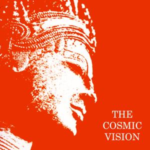 The Cosmic Vision