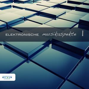 Elektronische Musikaspekte, Vol. 1