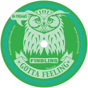 Gotta Feeling