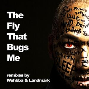 The Fly that Bugs me - the remixes