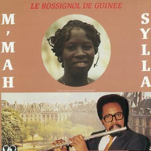 Le rossignol de Guinée