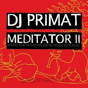 Meditator II