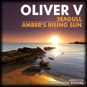 Seagull / Ambers Rising Sun
